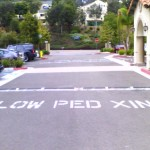 1398271903_Slow Ped Xing